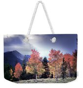 Aspens In Autumn Light Weekender Tote Bag