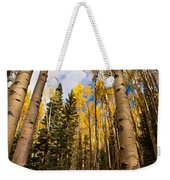 Aspens In Santa Fe 3 Weekender Tote Bag