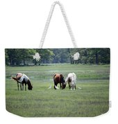 Assateague Island - Wild Ponies And Their Buddies  Weekender Tote Bag