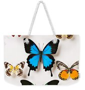 Assorted Butterflies Weekender Tote Bag