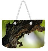 At Lachish Vineyard Weekender Tote Bag