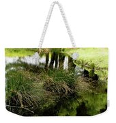 At The Edge Of The Forest Pond. Weekender Tote Bag