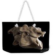 Atlas And Axis Vertebrae Weekender Tote Bag