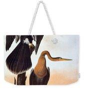 Audubon: Anhinga Weekender Tote Bag