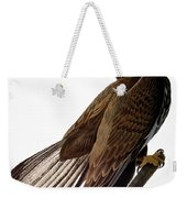 Audubon: Bald Eagle Weekender Tote Bag