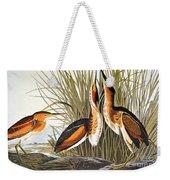 Audubon: Bittern Weekender Tote Bag