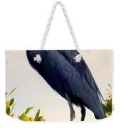Audubon Blue Weekender Tote Bag