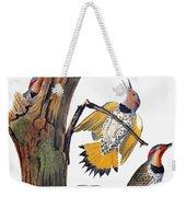 Audubon: Flicker Weekender Tote Bag