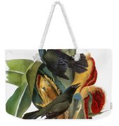 Audubon: Grackle Weekender Tote Bag