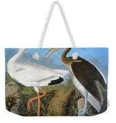 Audubon: Ibis Weekender Tote Bag