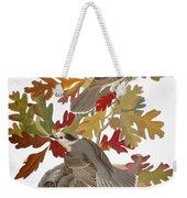 Audubon: Jay Weekender Tote Bag