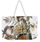 Audubon: Kestrel, 1827 Weekender Tote Bag