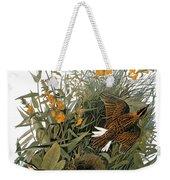 Audubon: Meadowlark Weekender Tote Bag