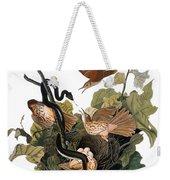 Audubon: Thrasher Weekender Tote Bag