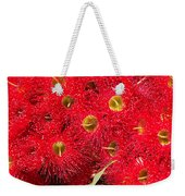 Australian Native Eucalyptus Flowers Weekender Tote Bag