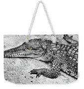 Australian Shy Crocodile  Weekender Tote Bag