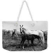Austria: Horse Farm Weekender Tote Bag