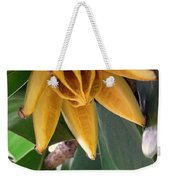 Autograph Tree Seed Pod Weekender Tote Bag