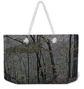 Autumn 2015 Panorama In The Woods Pa 01 Weekender Tote Bag