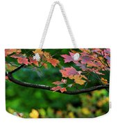 Autumn Along The Branch Weekender Tote Bag