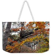 Autumn At Beech Forest Weekender Tote Bag