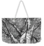Autumn Birch Weekender Tote Bag