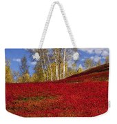 Autumn Birches And Barrens Weekender Tote Bag