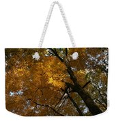 Autumn Canopy Weekender Tote Bag