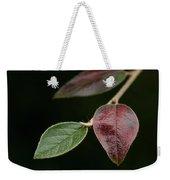 Autumn Change Weekender Tote Bag