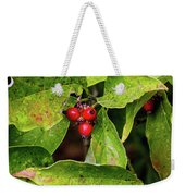Autumn Dogwood Berries Weekender Tote Bag