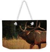 Autumn Elk In Cataloochee Valley Textured Weekender Tote Bag
