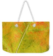 Autumn Fall Colours 1 Weekender Tote Bag