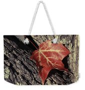 Autumn Find Weekender Tote Bag