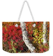 Autumn Foliage In Finland Weekender Tote Bag