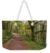 Autumn Forest Path - Weekender Tote Bag