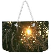 Autumn Grasses In The Morning Weekender Tote Bag