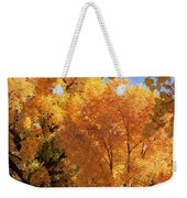 Autumn In Curtin Weekender Tote Bag