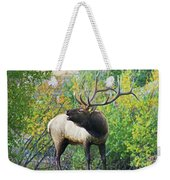 Autumn In Estes Park Weekender Tote Bag