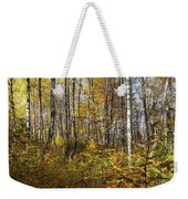 Autumn In The Birches Forest Weekender Tote Bag