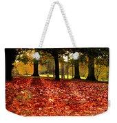 Autumn In Woodthorpe Weekender Tote Bag
