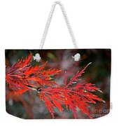 Autumn Japanese Maple Weekender Tote Bag