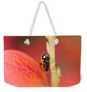 Autumn Ladybird Weekender Tote Bag
