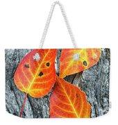 Autumn Leaves On Tree Bark Weekender Tote Bag