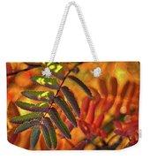 Autumn Leaves - Patagonia Weekender Tote Bag