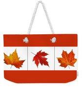 Autumn Leaves Triptych Weekender Tote Bag