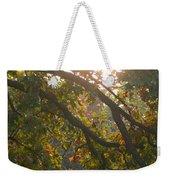 Autumn Morning Glow Weekender Tote Bag