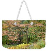 Autumn Paints A Dogwood And Ferns Weekender Tote Bag