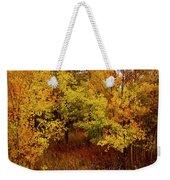 Autumn Palette Weekender Tote Bag by Carol Cavalaris