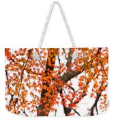 Autumn Red Leaves On A Tree   Weekender Tote Bag