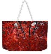 Autumn Red Trees 2015 Weekender Tote Bag